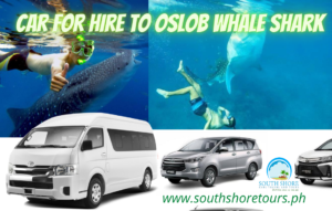 Car for Hire to Oslob Whale shark