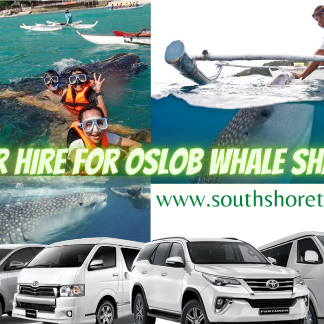 Car for Hire to Oslob Whale shark Watching